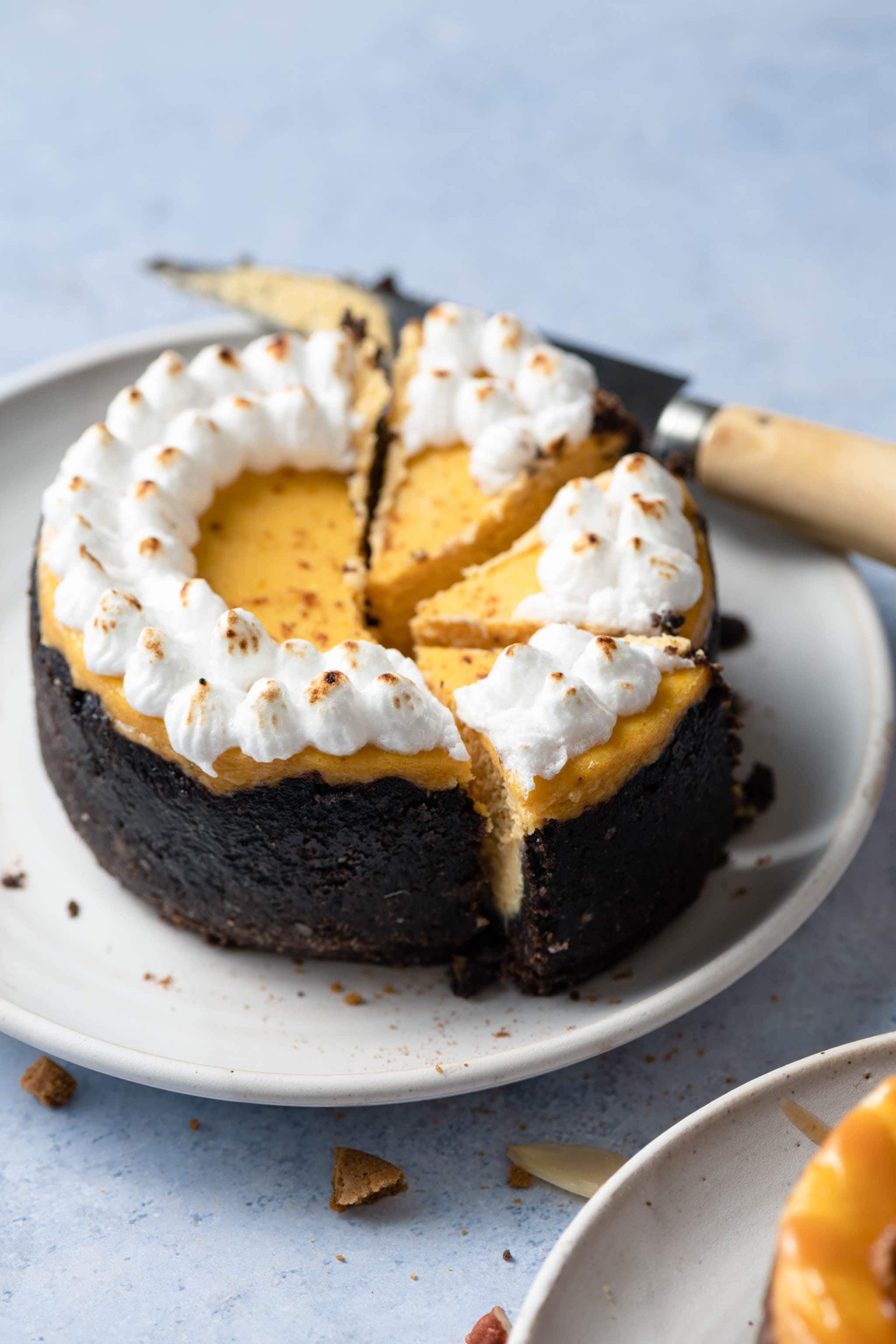 Mini Pumpkin Cheesecake with chocolate coconut crust