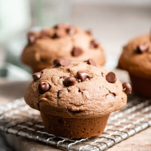 FLuffy Chocolate Chip Muffin Recipe.
