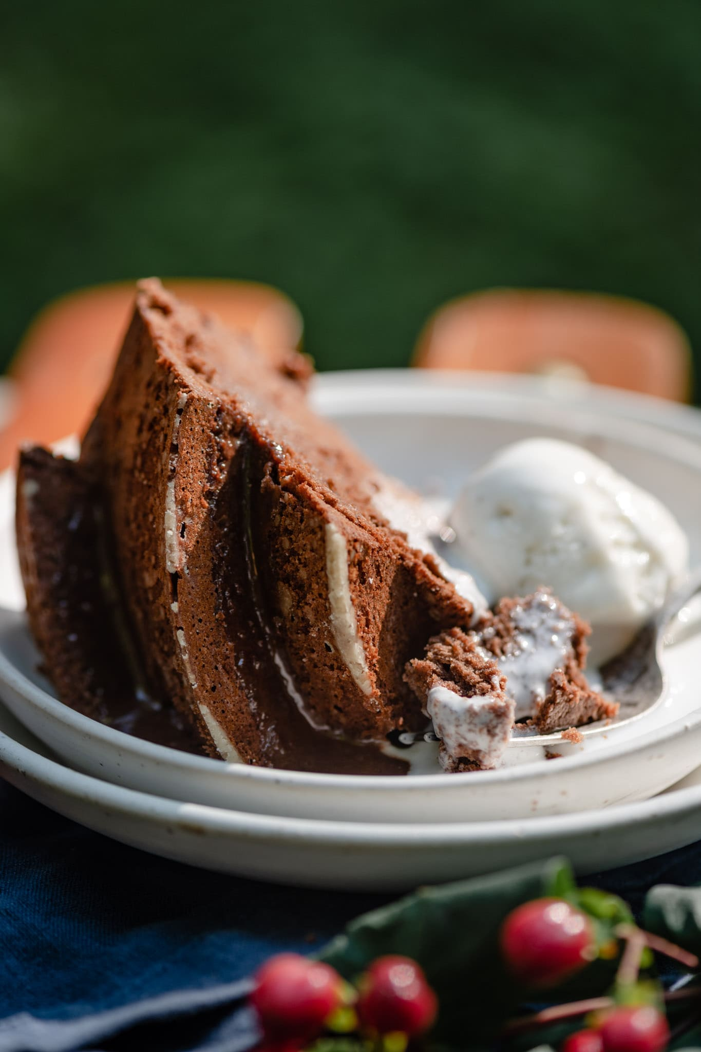 Summer cookout with cake and ice cream.