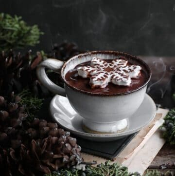 Closeup of a mug of steaming hot cocoa topped with a snowflake shaped marshmallow.